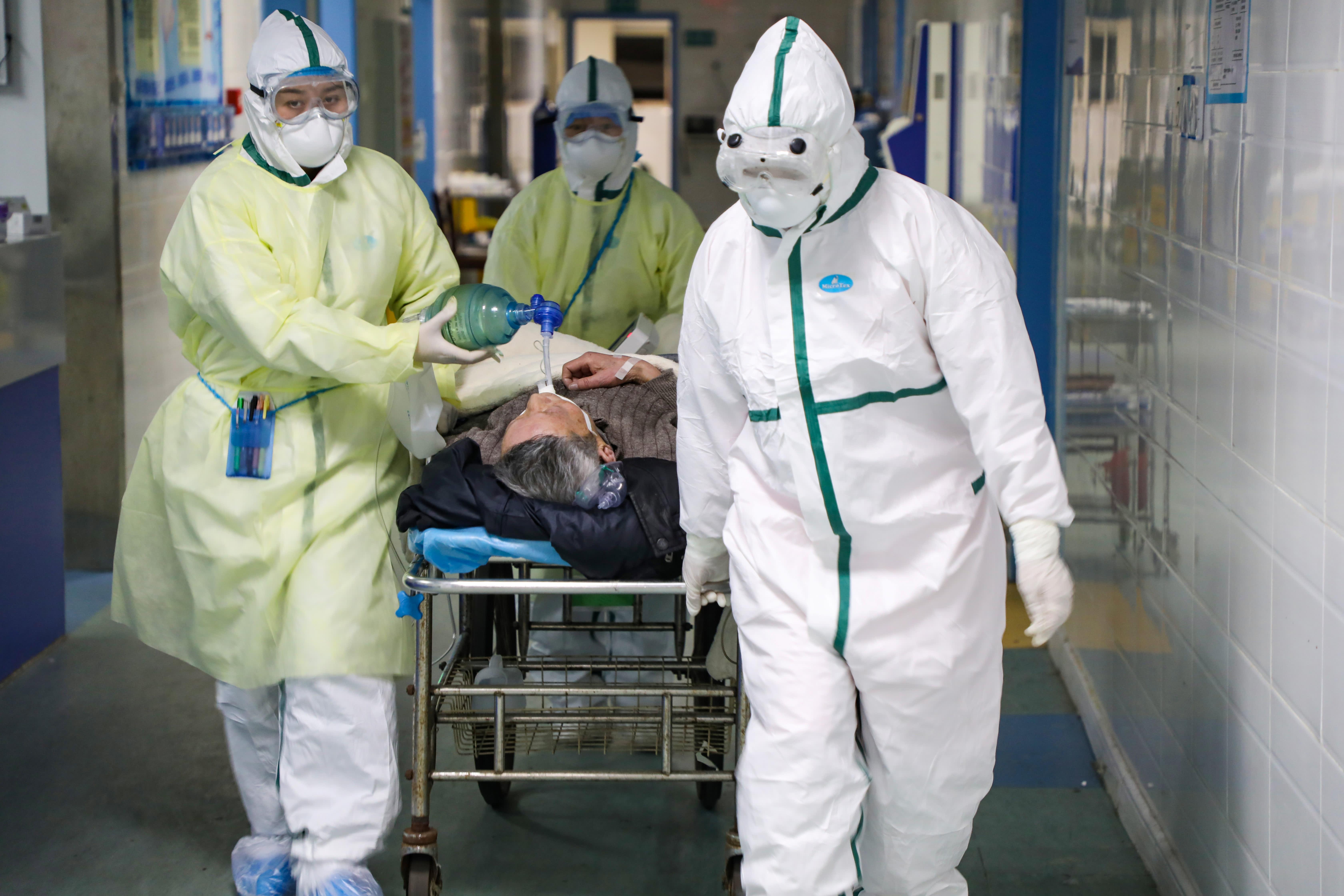 что такое canine coronavirus vaccine