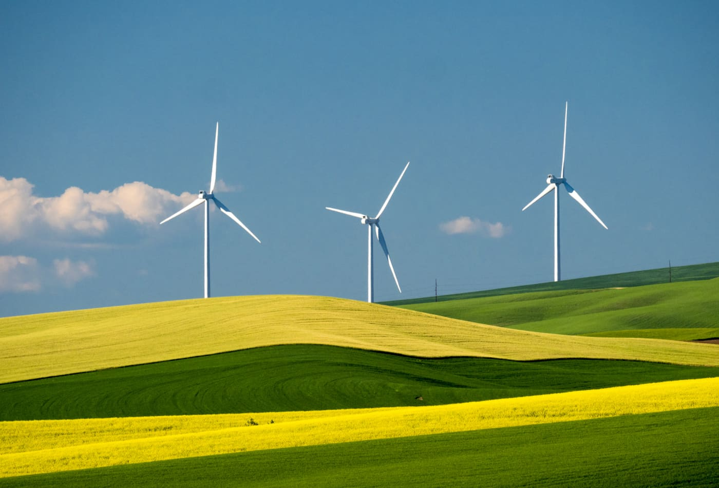 Wind has become the 'most-used' source of renewable electricity generation in the US