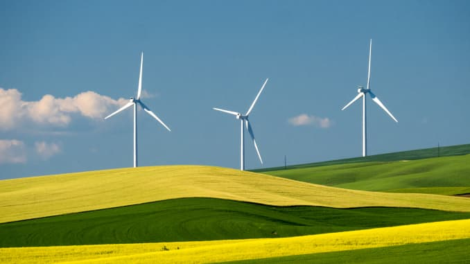 GP: Spring Canola and Wheat Fields with Wind Generators