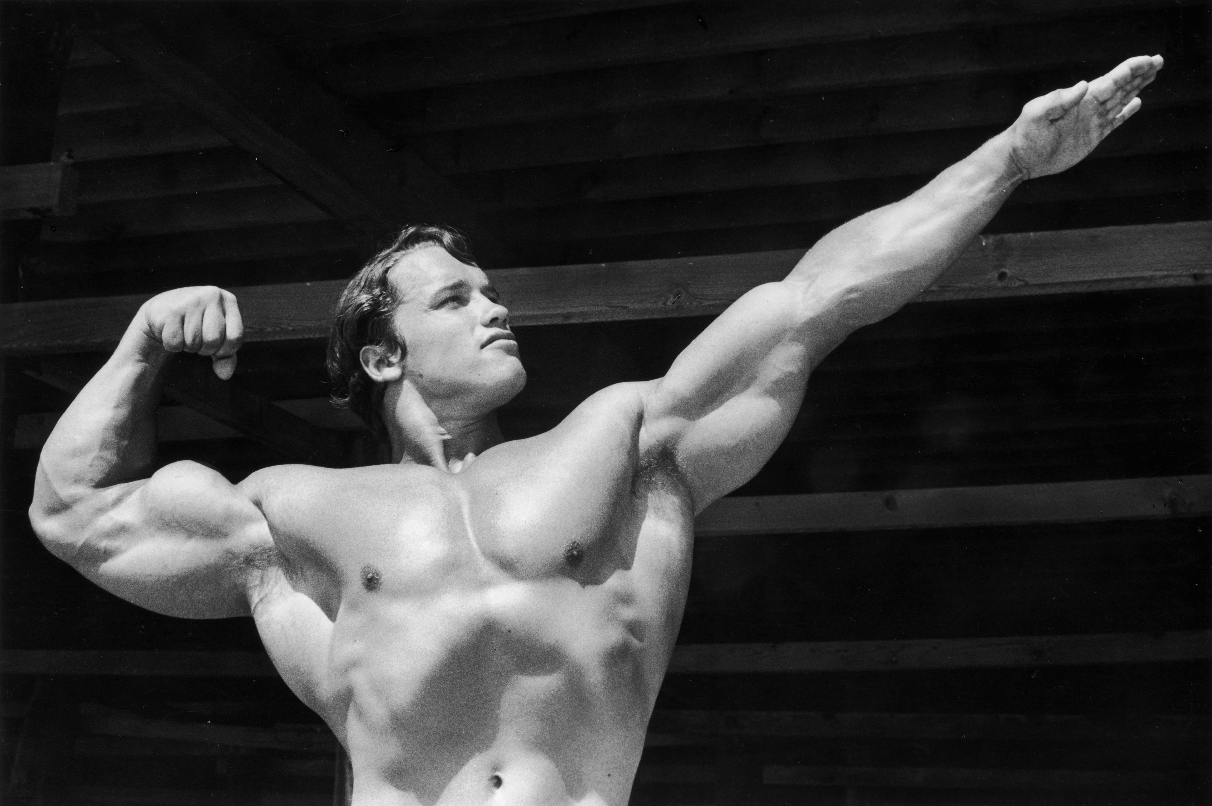 Arnold Schwarzenegger Shared His Home Workout Routine On Reddit