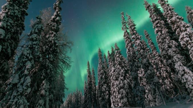 HO: Northern Lights 200330