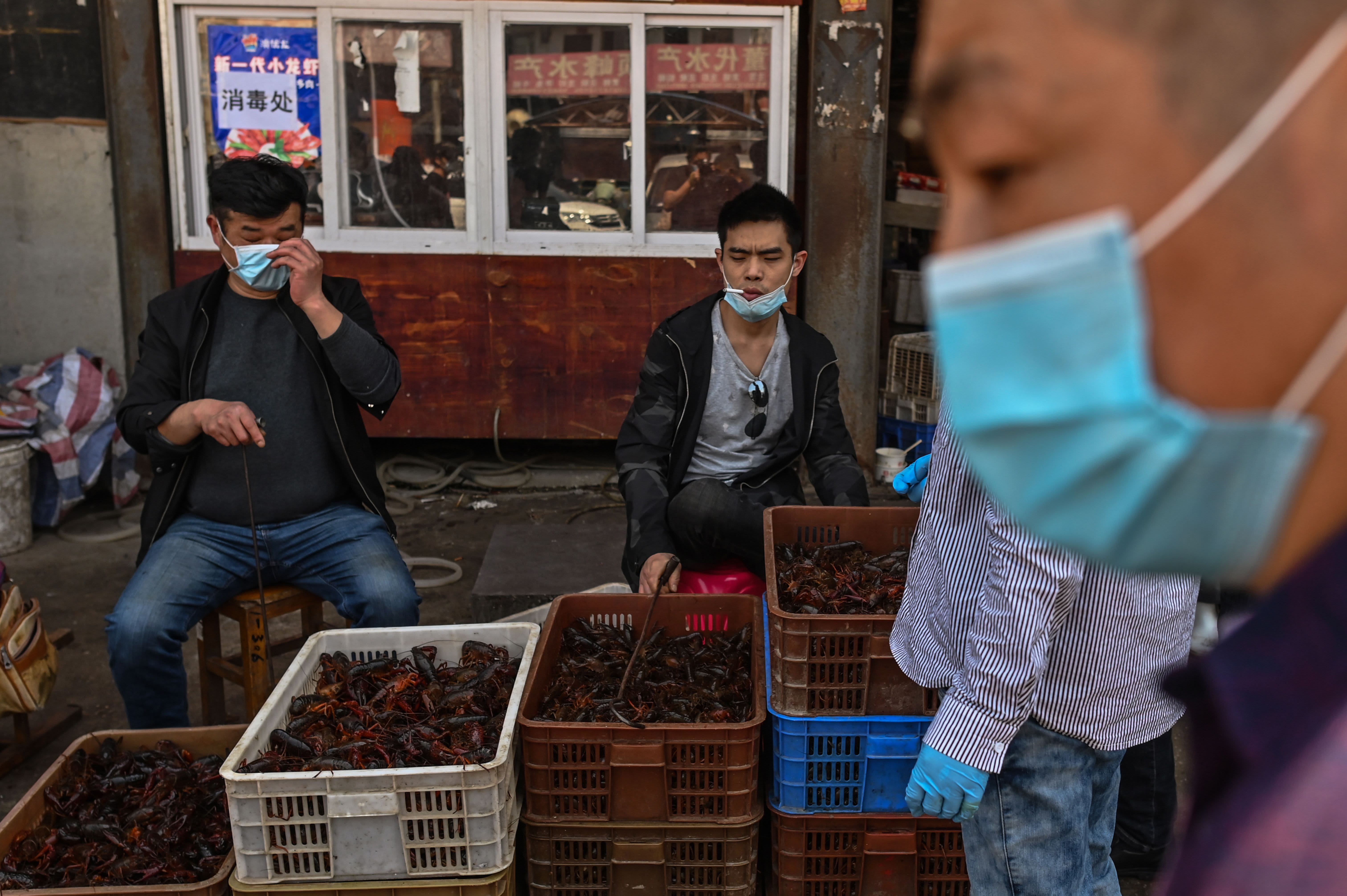 WHO calls for research into Wuhan market, Indonesia eases travel restrictions