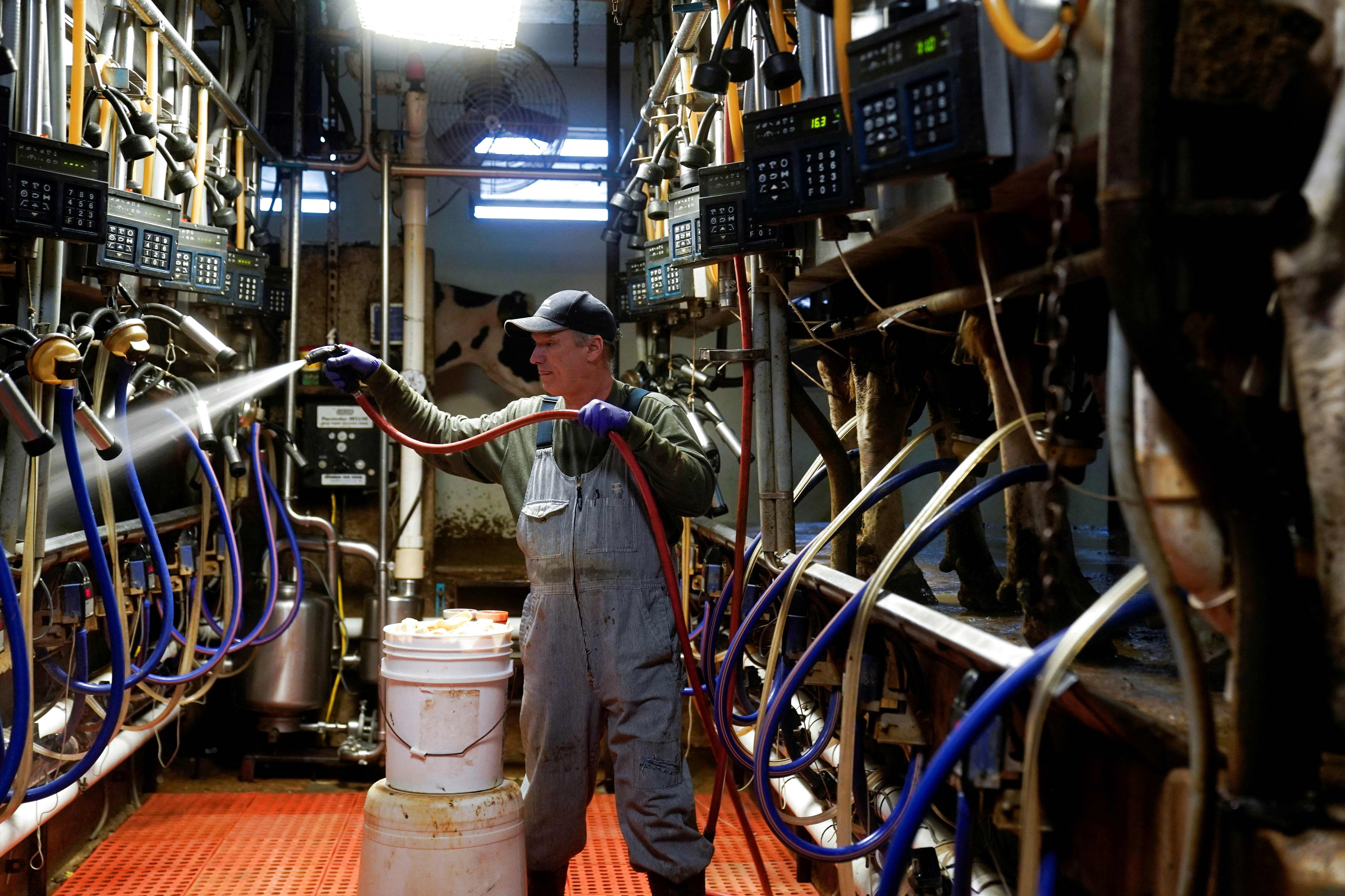 Pandemic fallout is severely threatening US dairy farms