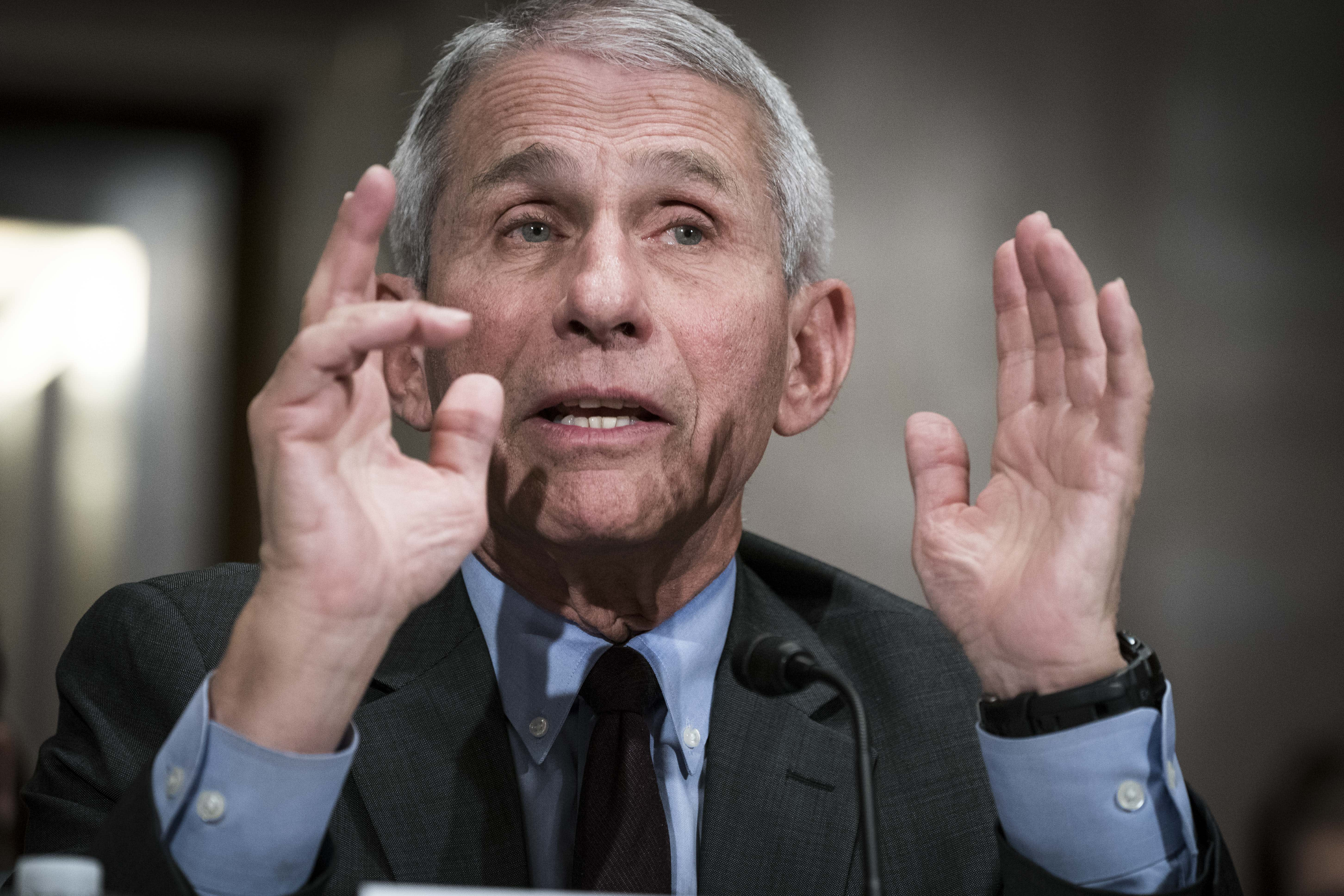 Dr. Anthony Fauci warns senators of 'suffering and death' if states reopen too early