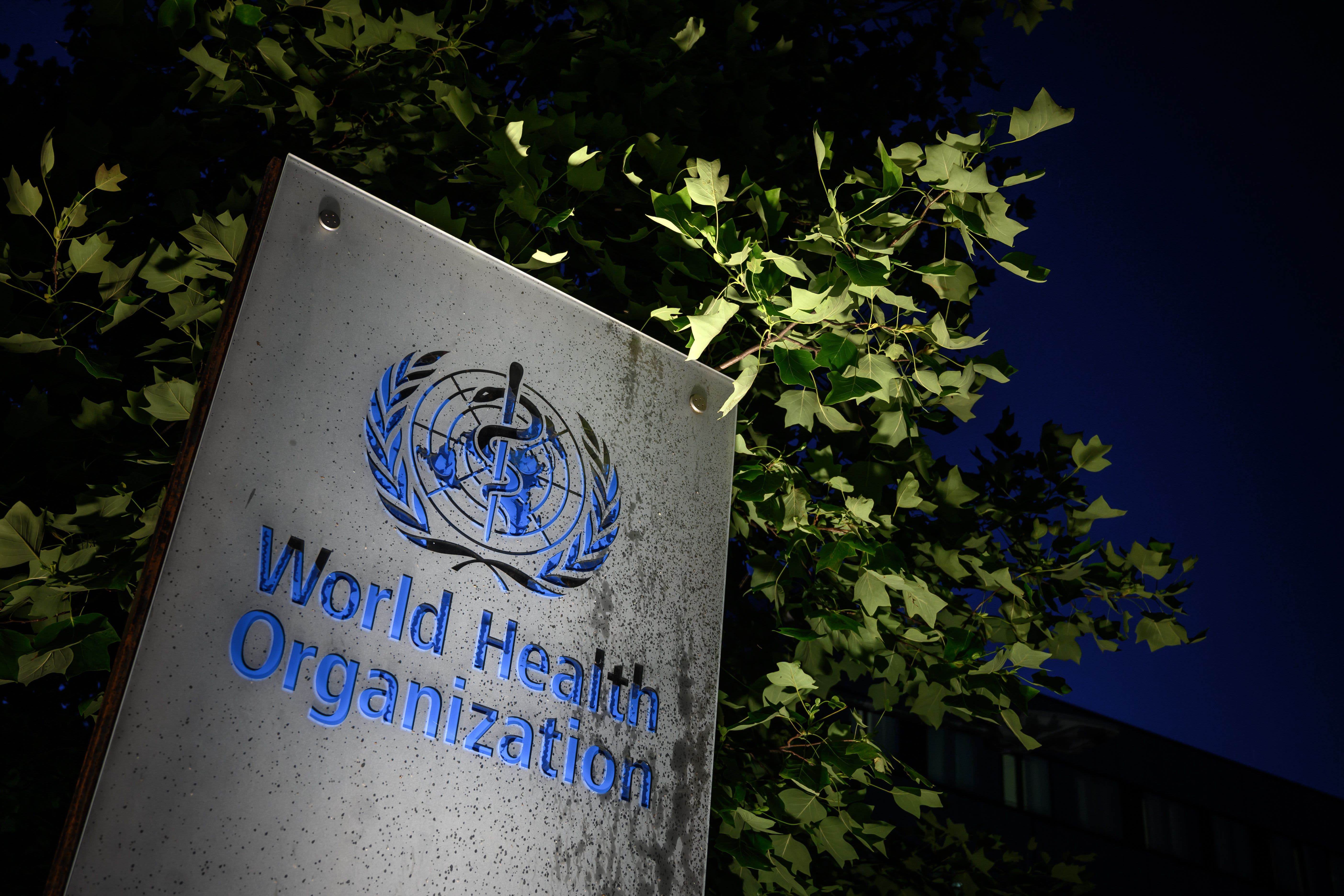 Dr. Fauci to lead U.S. delegation at WHO meetings as Biden plans to reverse Trump withdrawal
