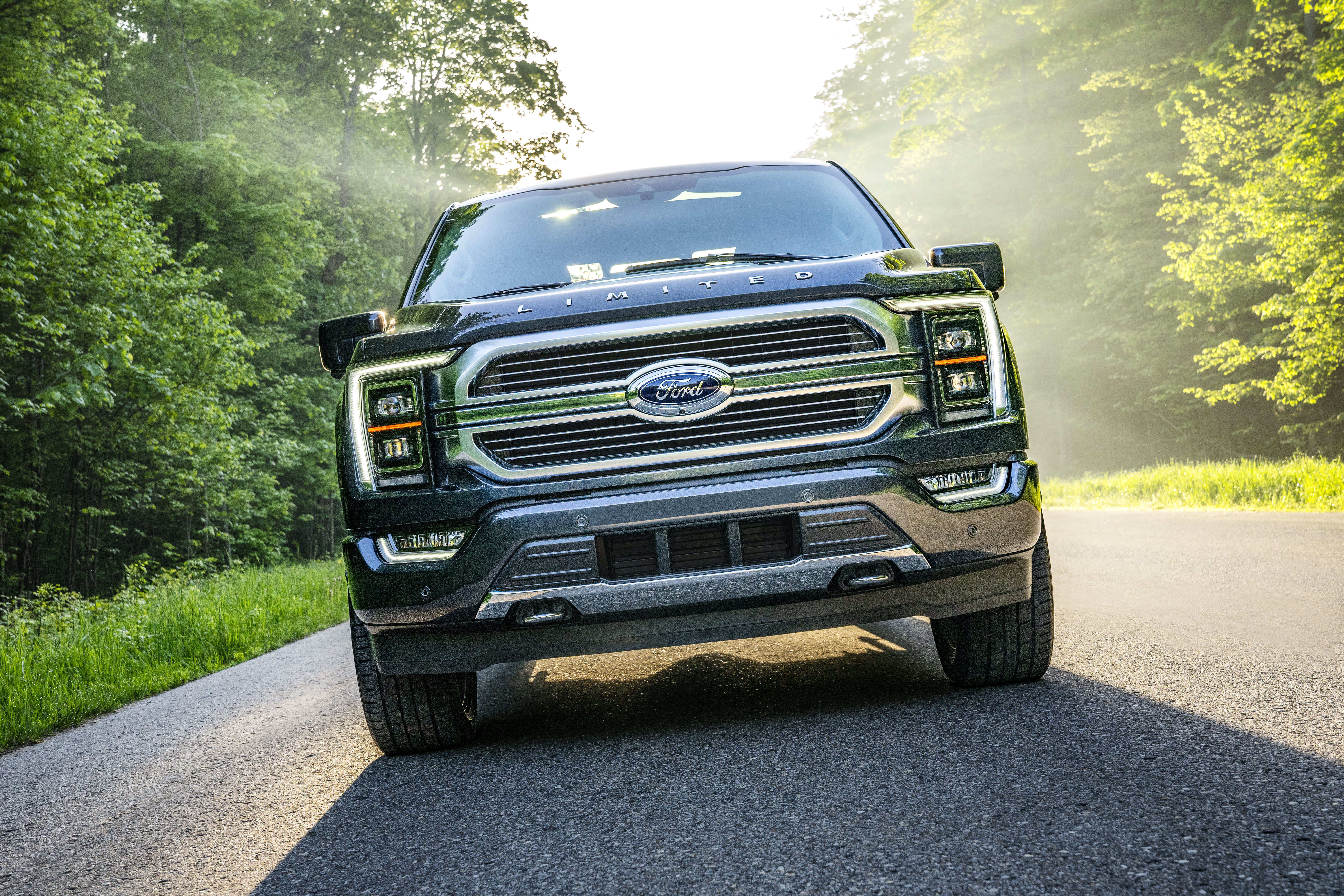 Ford unveils new F-150 as tech-savvy pickup with hands-free driving