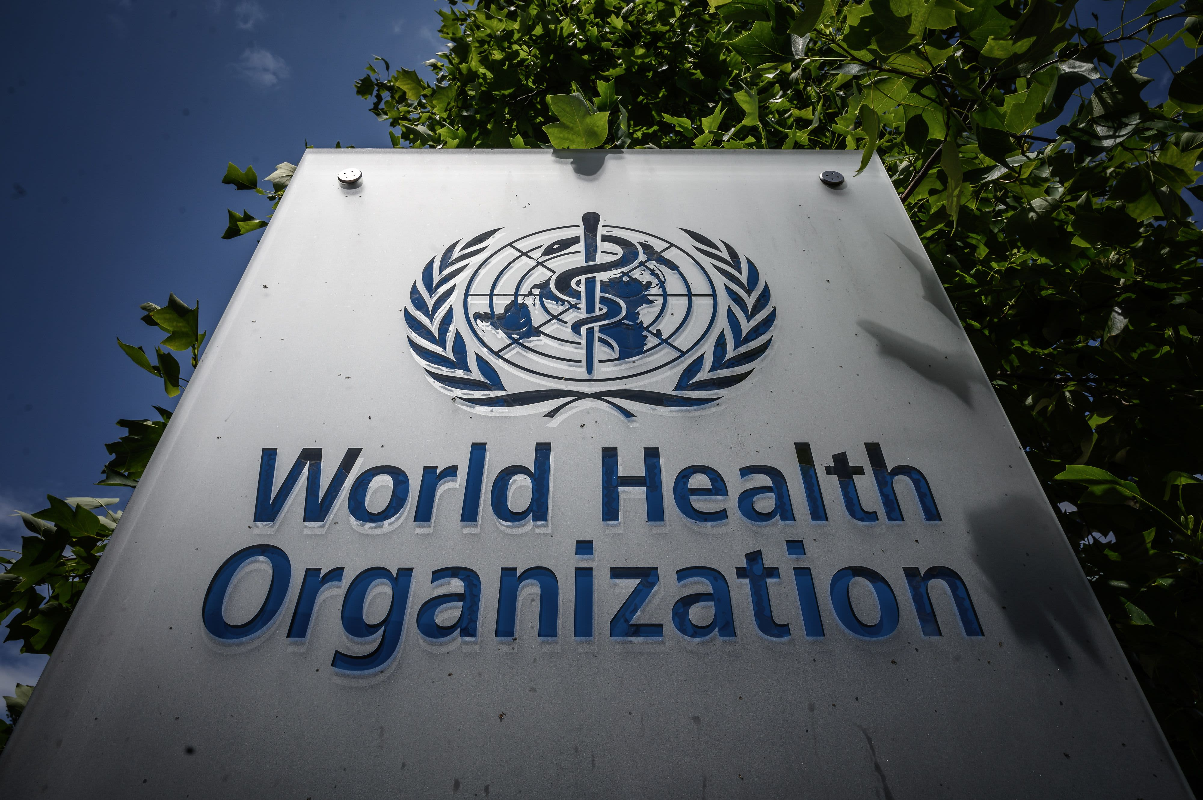 Watch live: World Health Organization holds Q&A on the coronavirus outbreak - CNBC