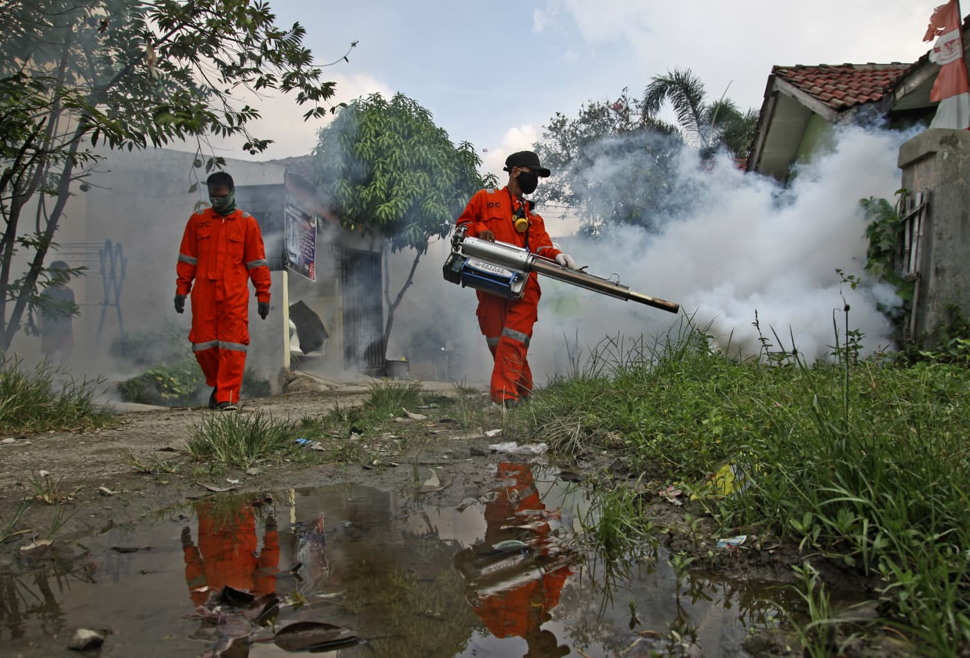 Outbreak of dengue fever in Southeast Asia is 'exploding' amid the coronavirus fight