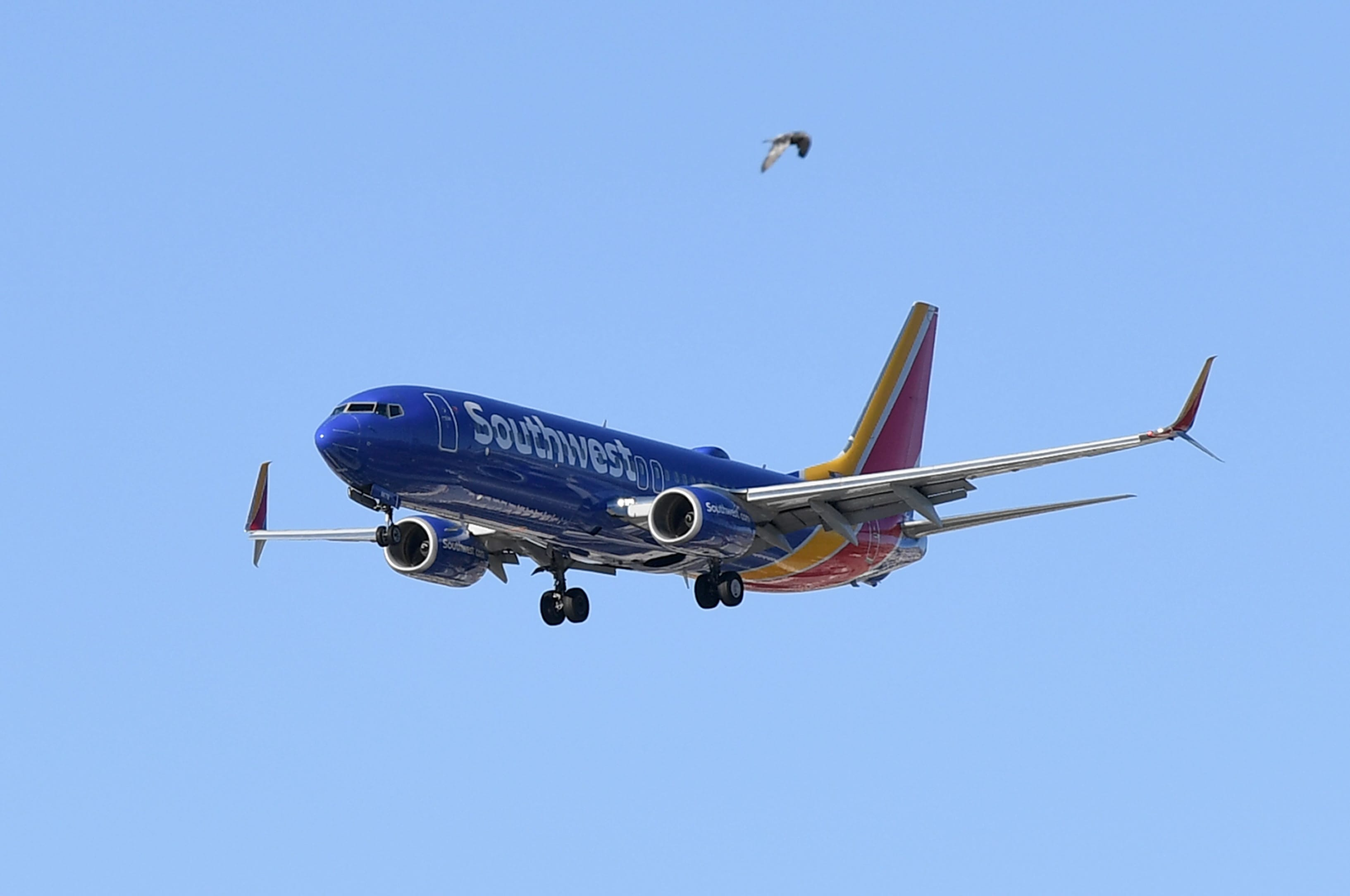 American, Southwest postponed plans to serve alcohol after guest interruptions, assault on board thumbnail