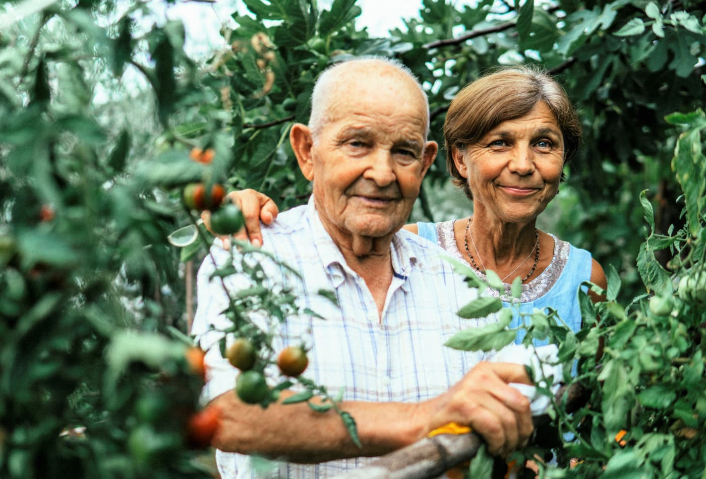 Old couple gardening in Italy