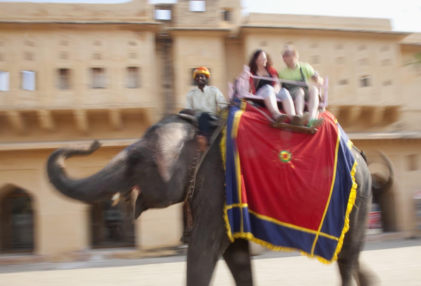 社交媒体提高了圈养野生动物相遇的人气,例如骑大象和散步狮子。