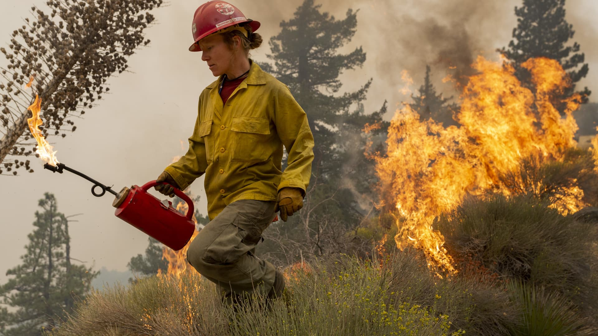 Firefighter Sara Sweeney uses a drip torch to set a backfire to protect mountain communities from the Bobcat Fire in the Angeles National Forest on September 10, 2020 north of Monrovia, California.