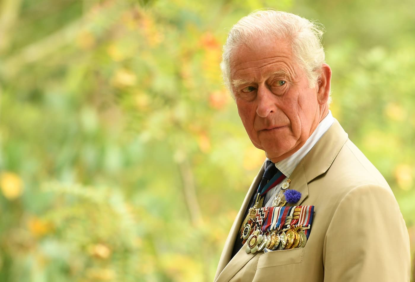 Prince Charles calls for a 'Marshall-like plan' for the planet