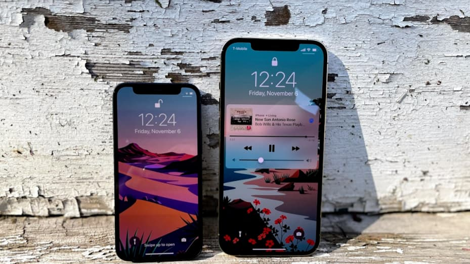 iPhone 12 Mini and iPhone 12 Pro Max.