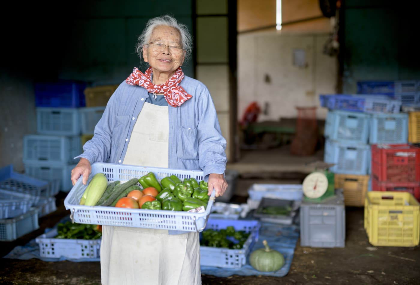 This Japanese 80% diet rule can help you live a longer life, says longevity researcher