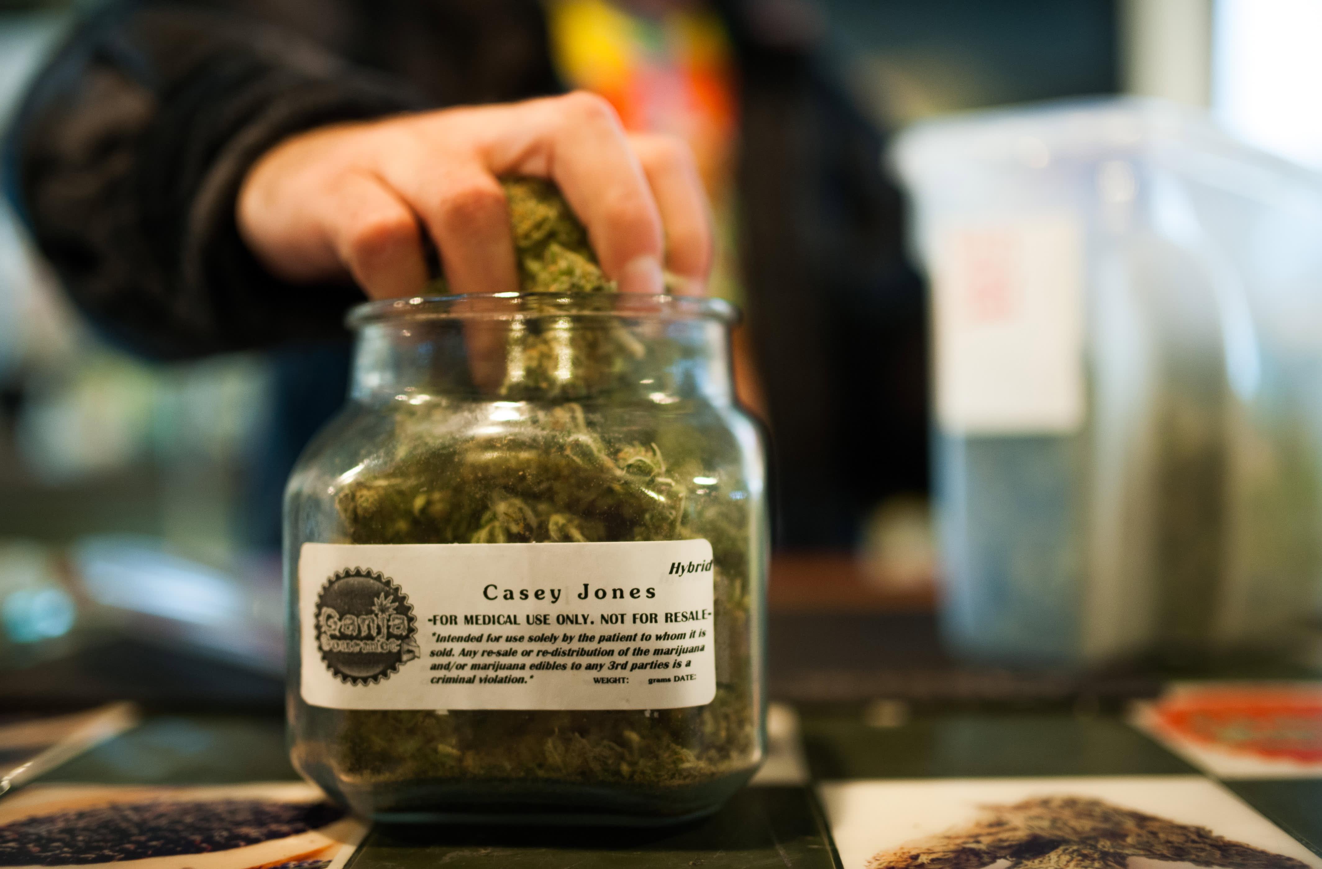 Marijuana market has 30-40%more upside, pot ETF company says after Joe Biden success thumbnail