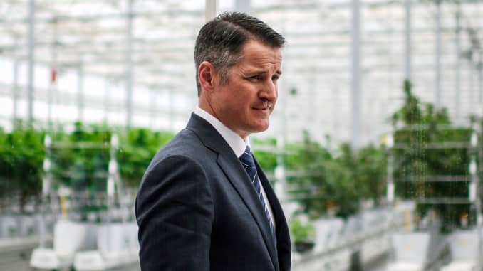 US businessman, Brendan Kennedy, CEO of Tilray medical cannabis producer, poses in a greenhouse of the Canadian company's European production site in Cantanhede, on April 24, 2018.