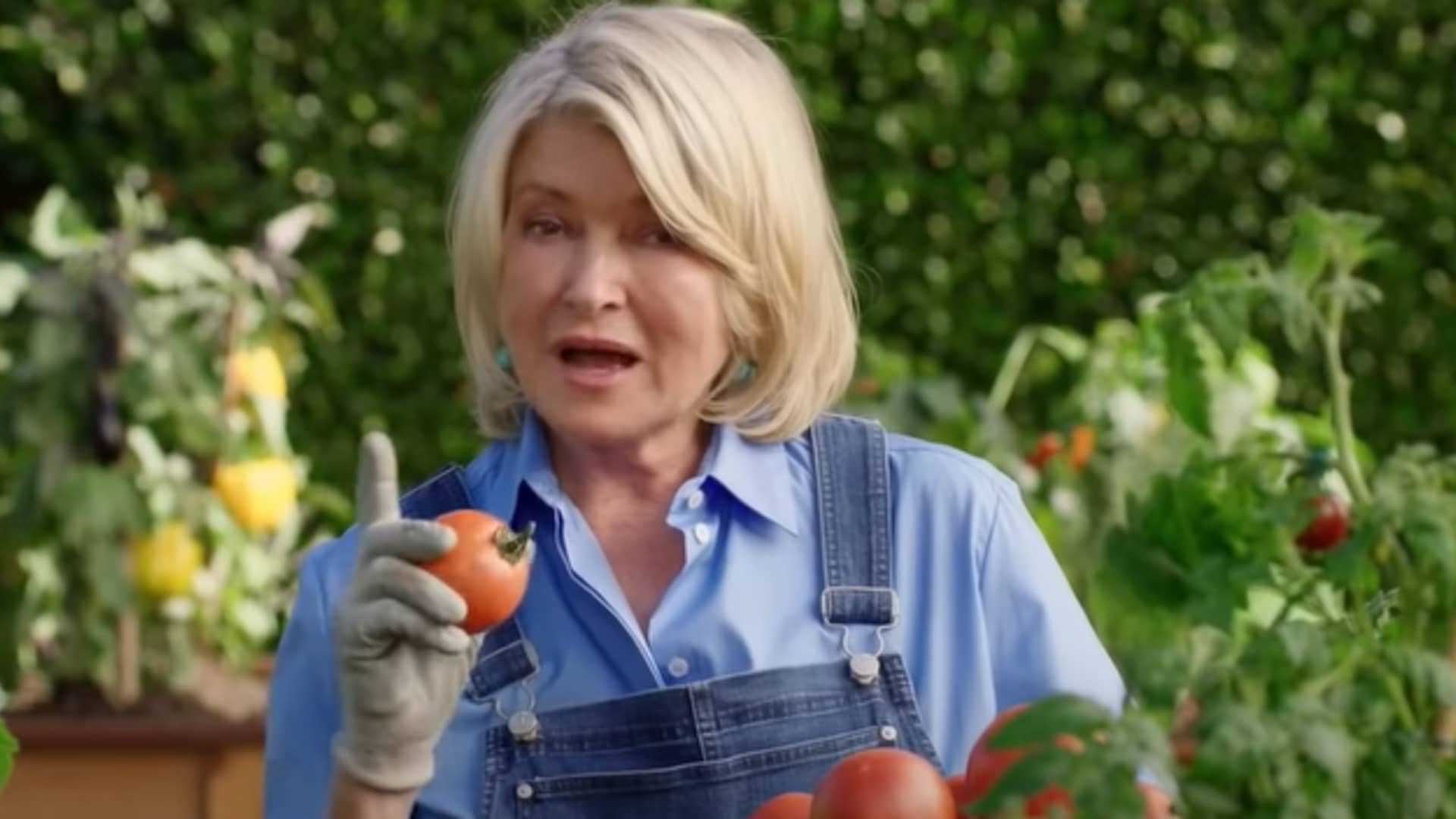 Still from Scotts Miracle-Gro Super Bowl commercial.