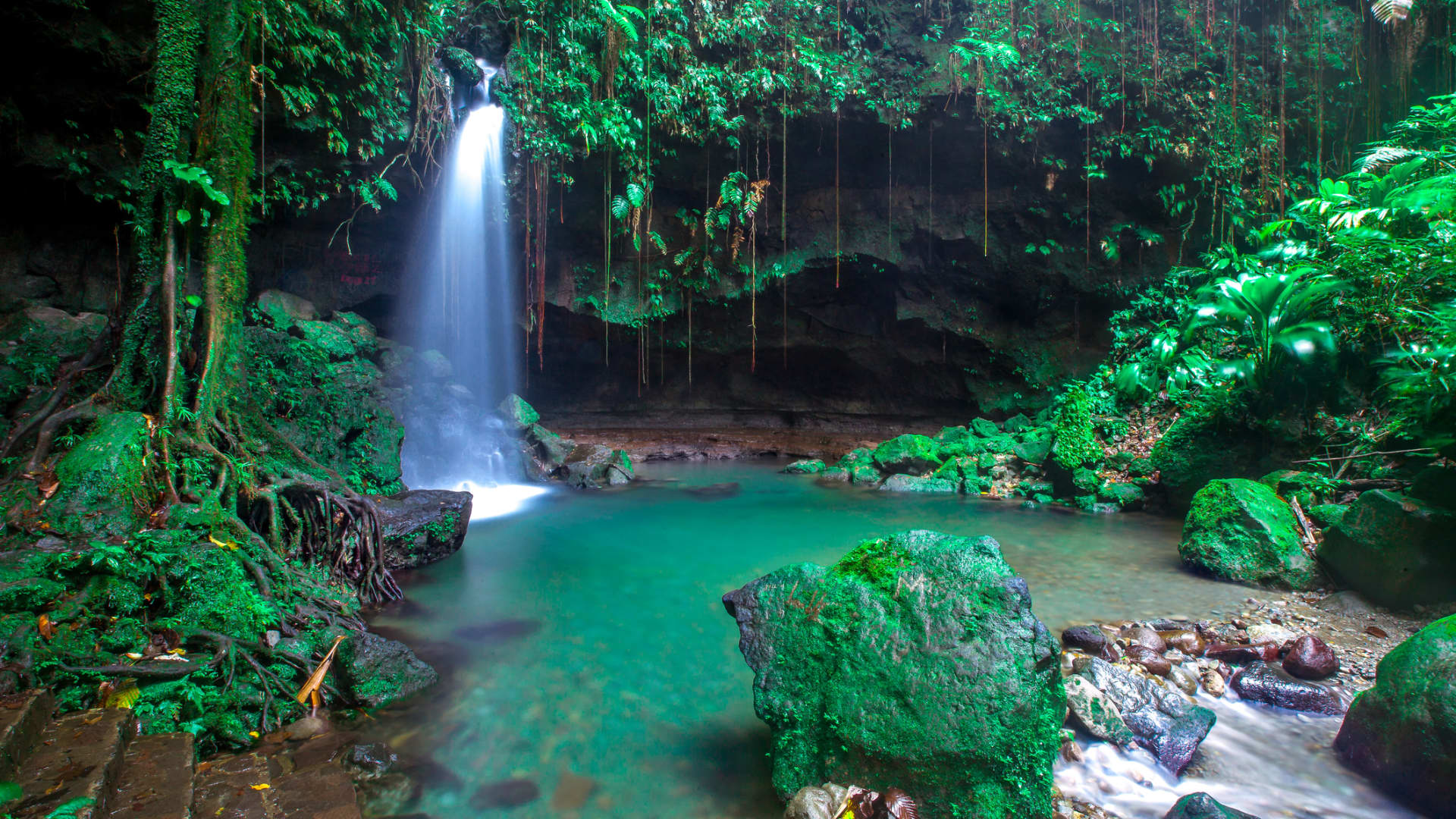 The 275-square-mile island nation of Dominica allows travelers from high-risk countries to visit places like Trafalgar Falls and the Emerald Pool (shown here).