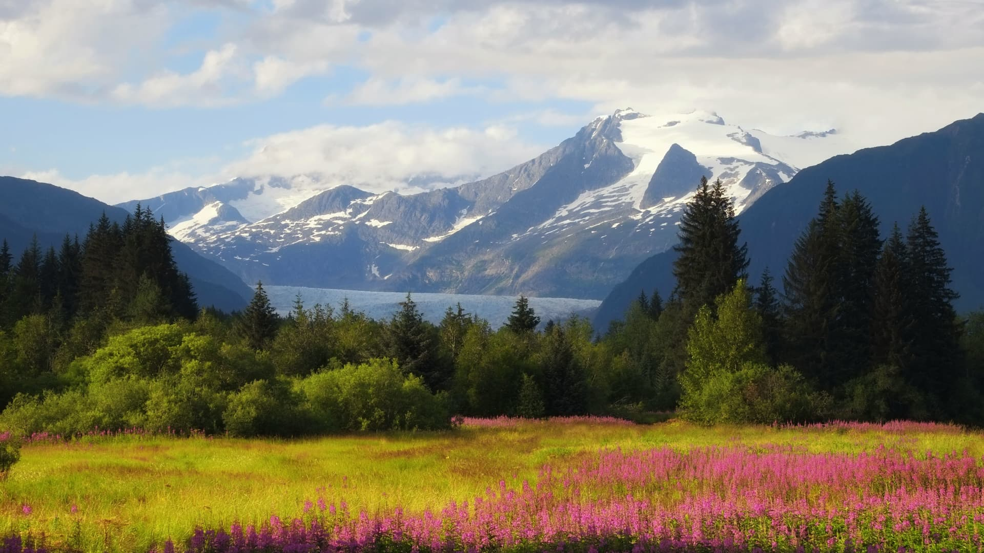 Guided tour operator Trafalgar is reporting a 56% increase in travel to Alaska this summer.