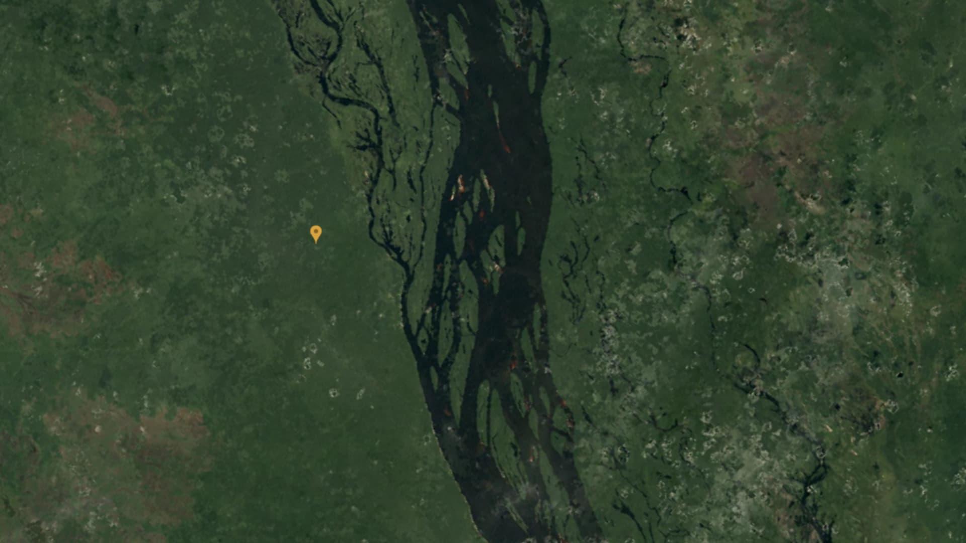 The Amazon rainforest in 1984