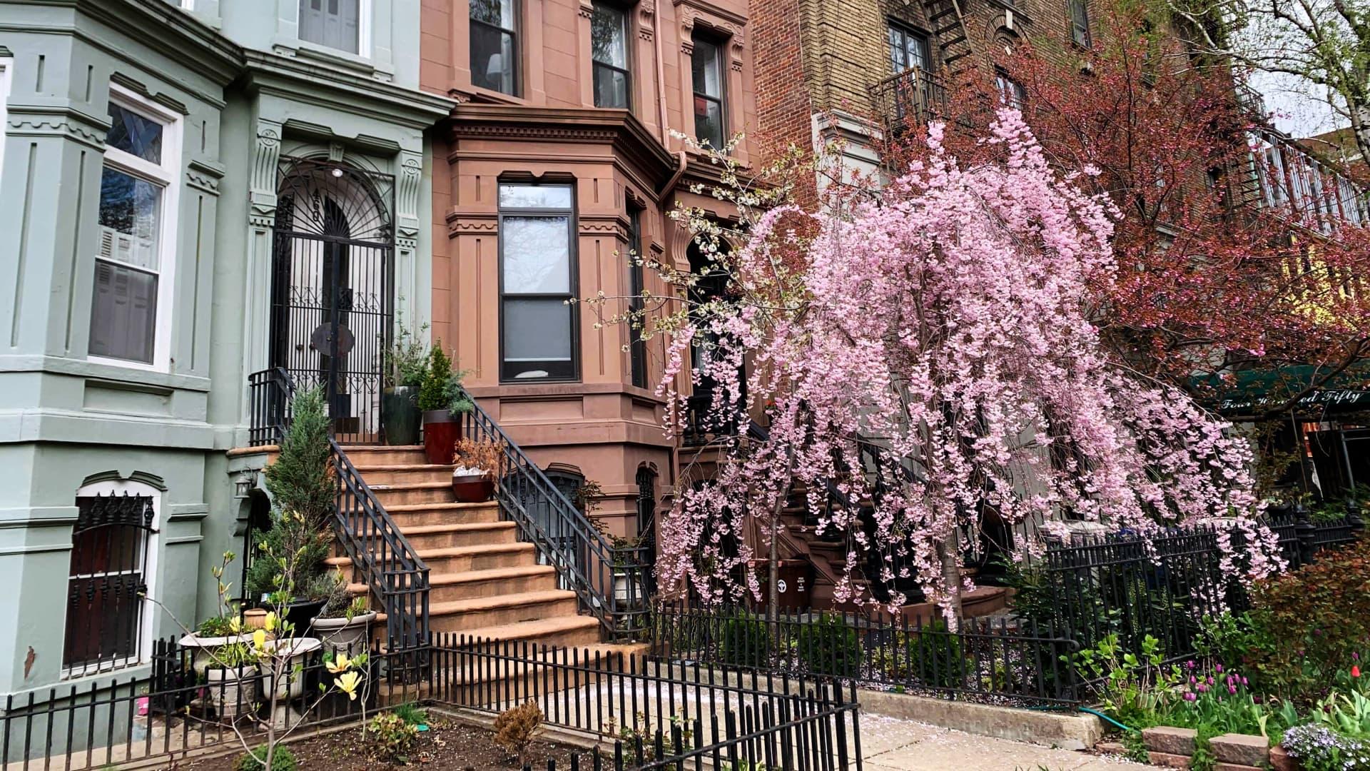 A morning walk in Brooklyn's Clinton Hill neighborhood in spring.