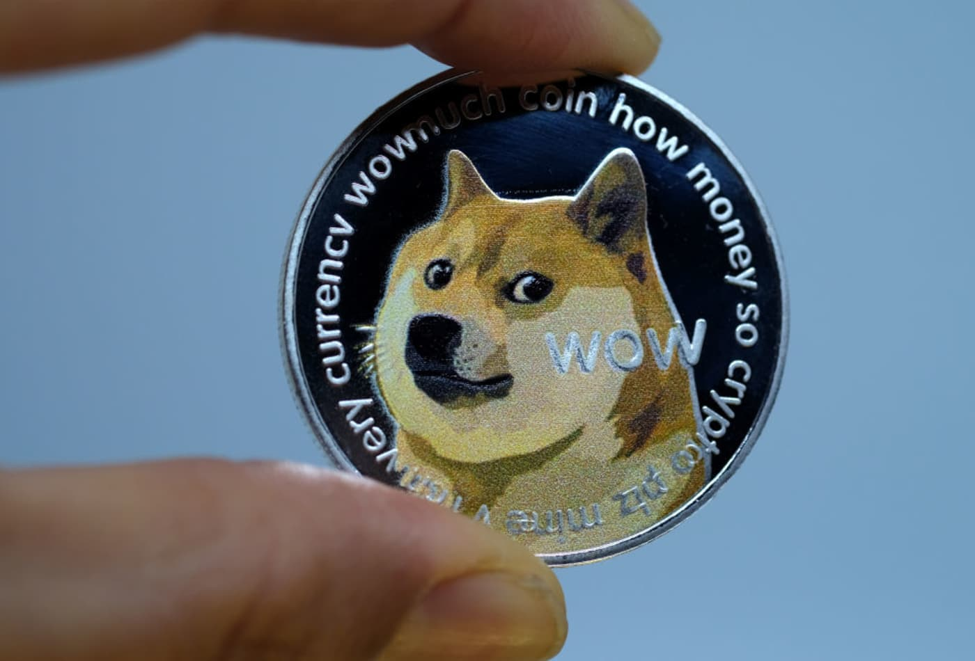 Dogecoin up 12,000% since January — here's how much money you'd have if you invested $1,000 at the beginning of 2021