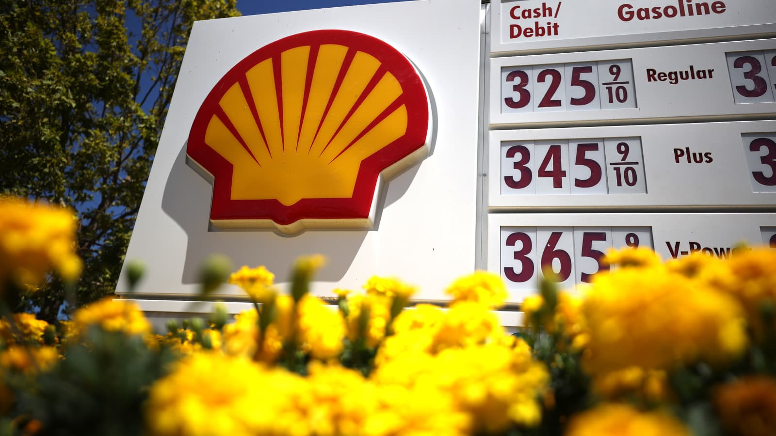 Shell earnings: Oil giant raises dividend and starts share buyback
