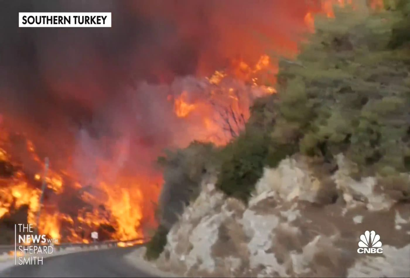 Villagers in Turkey fight wildfires with little government assistance