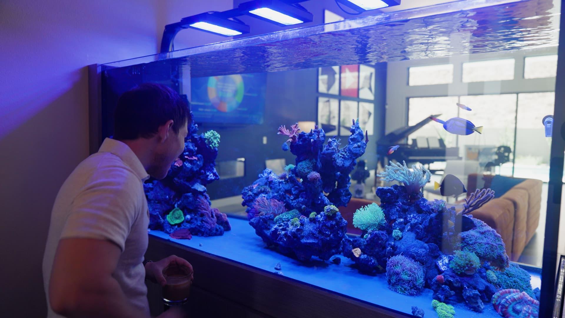 Graham Stephan has spent $45,000 building out his dream aquarium.