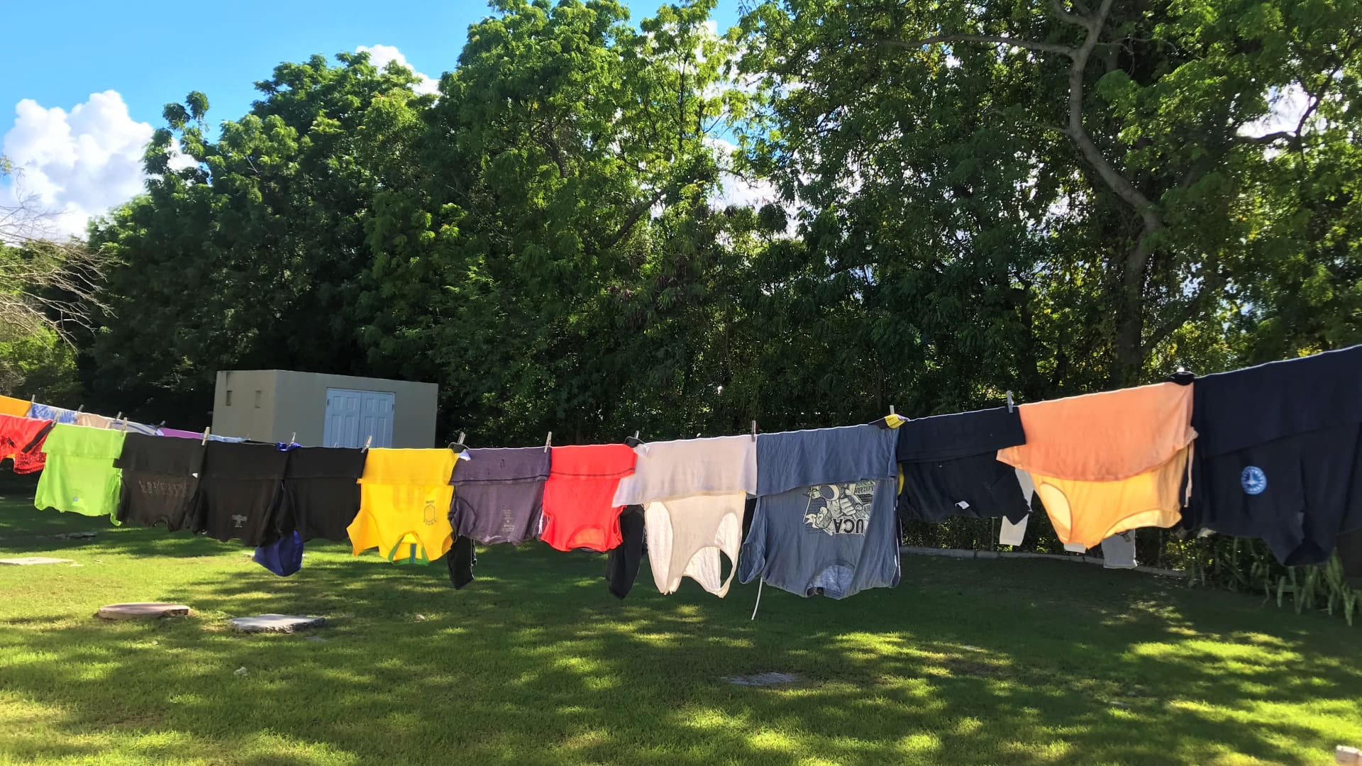 Freshly washed clothes dried in the breeze smell amazing!