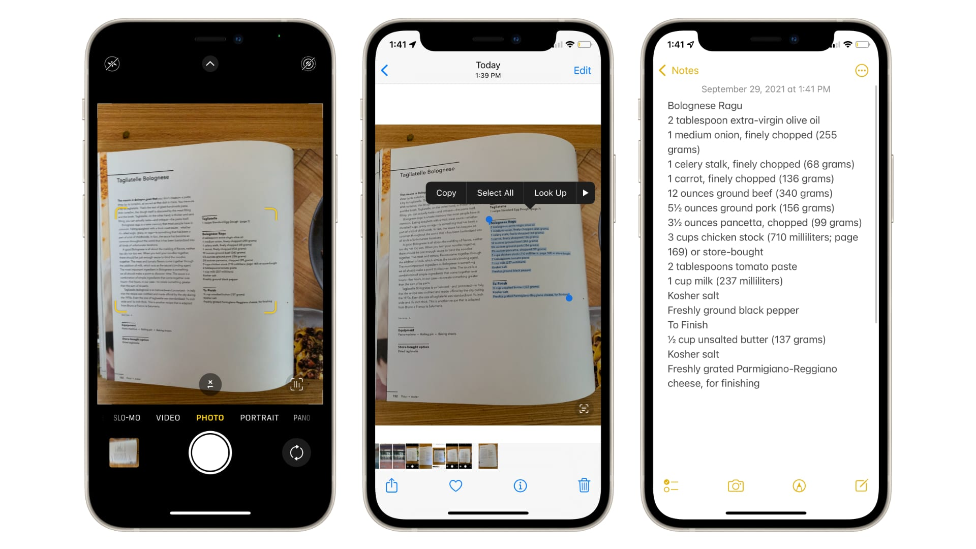 Copy-paste text from photos in iOS 15