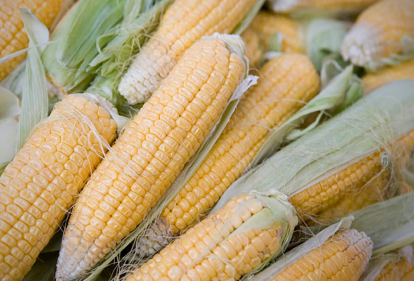 CNBC_commodities_biggest_price_moves_corn.jpg