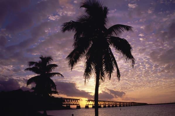 SS_10_Divorced_States_Miami.jpg