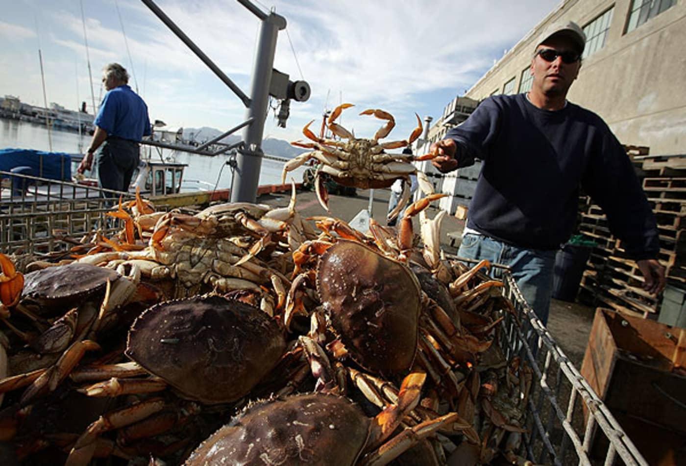 44344767 SS_Deadliest_jobs_fish.jpg