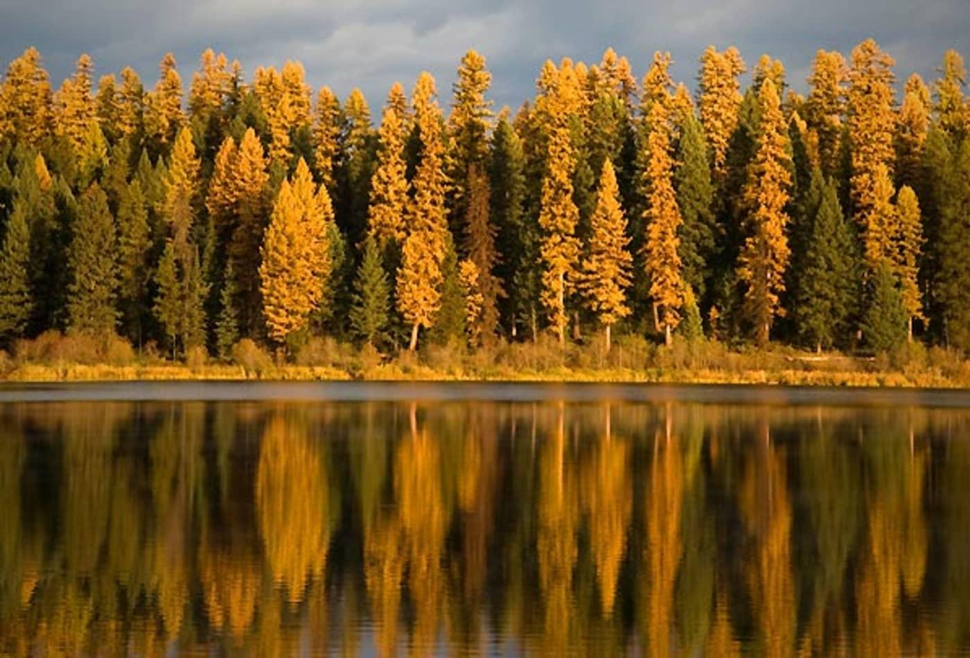 SS_Best_Fall_Drives_Montana.jpg