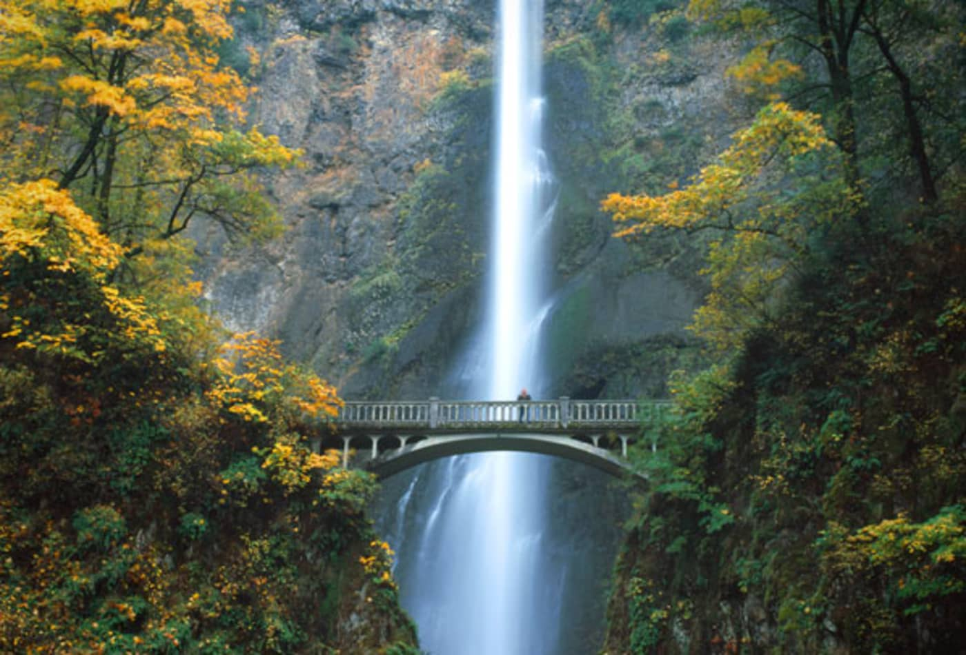 SS_Best_Fall_Drives_Oregon.jpg