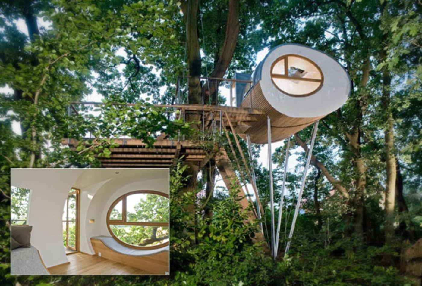 Treehouse_Homes_Baumraum.jpg