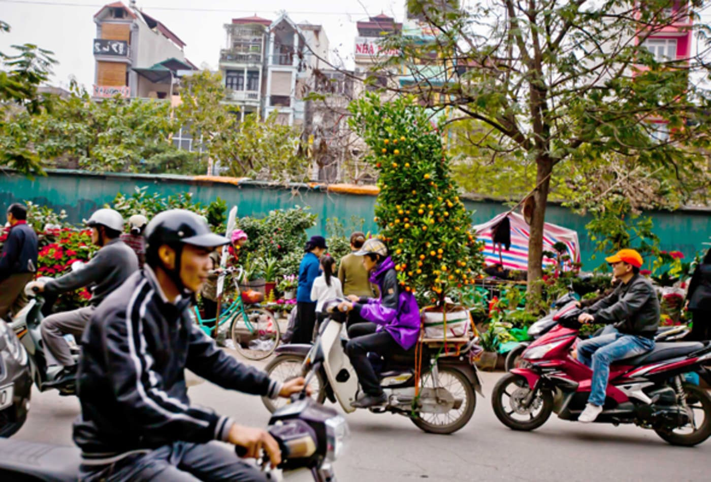 46322926 Vietnam.jpg