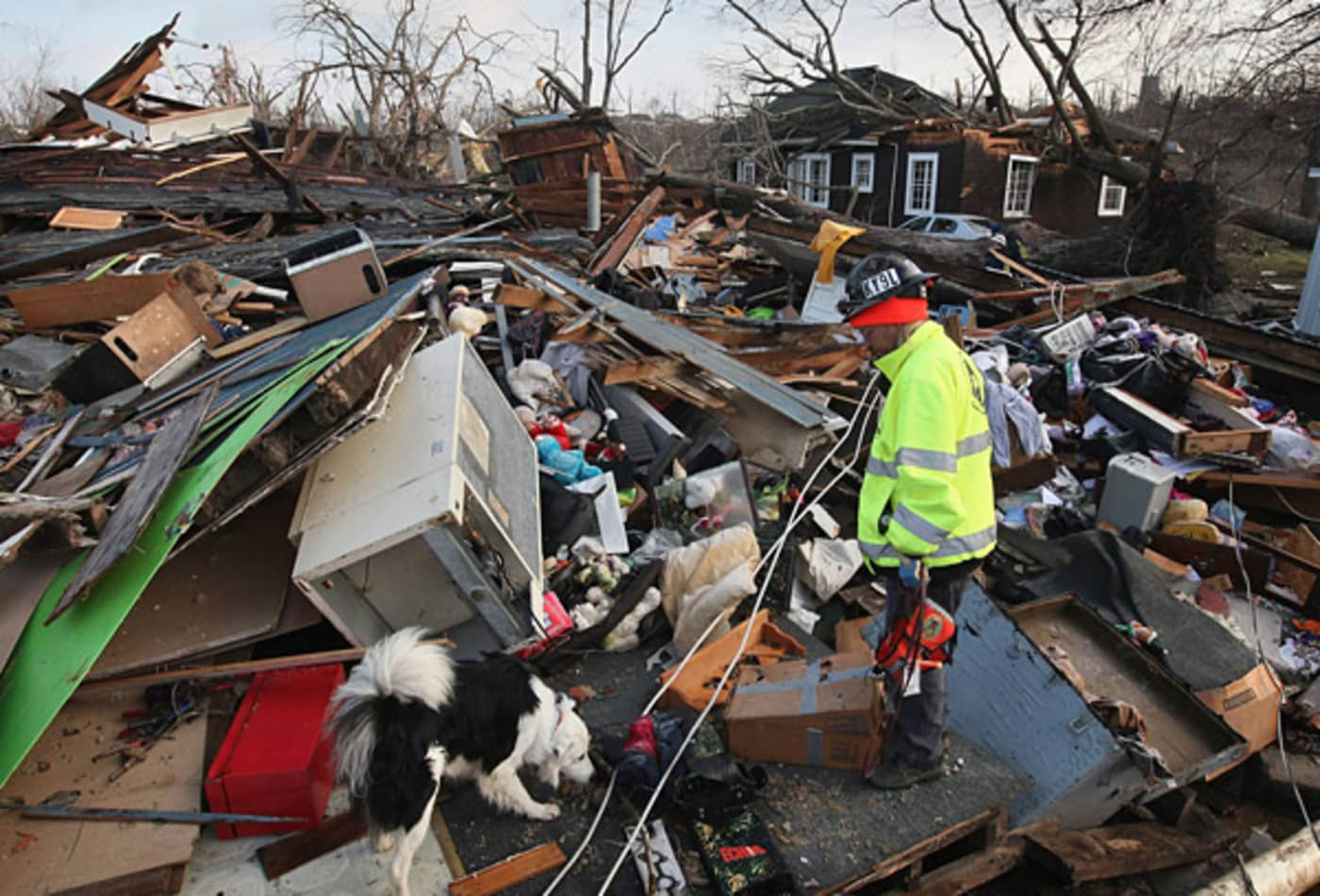 scenes-from-the-midwest-tornadoes-rescue-dog.jpg