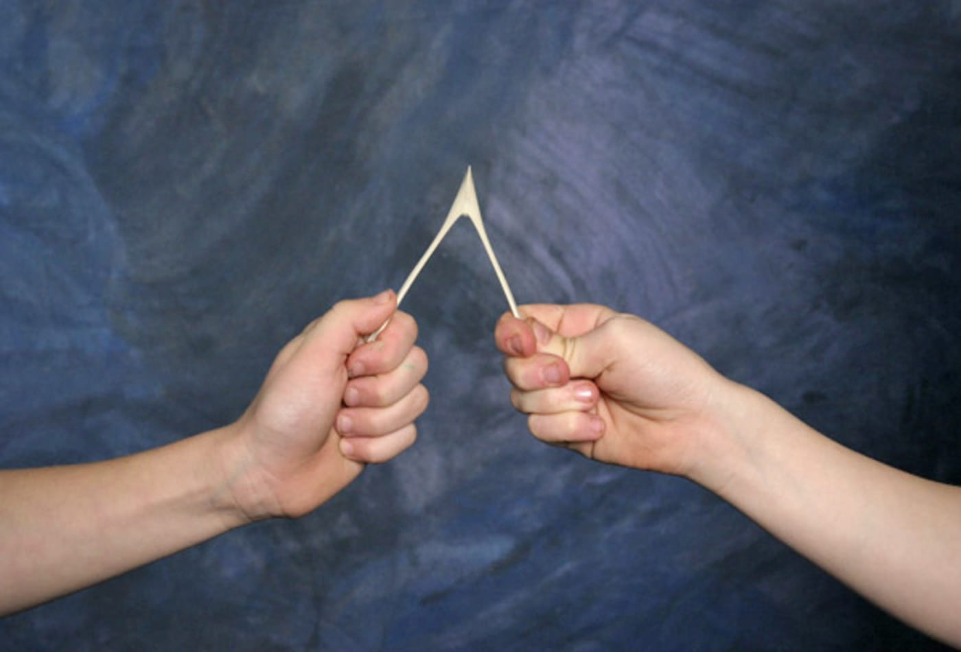 surprising-ideas-wishbone.jpg