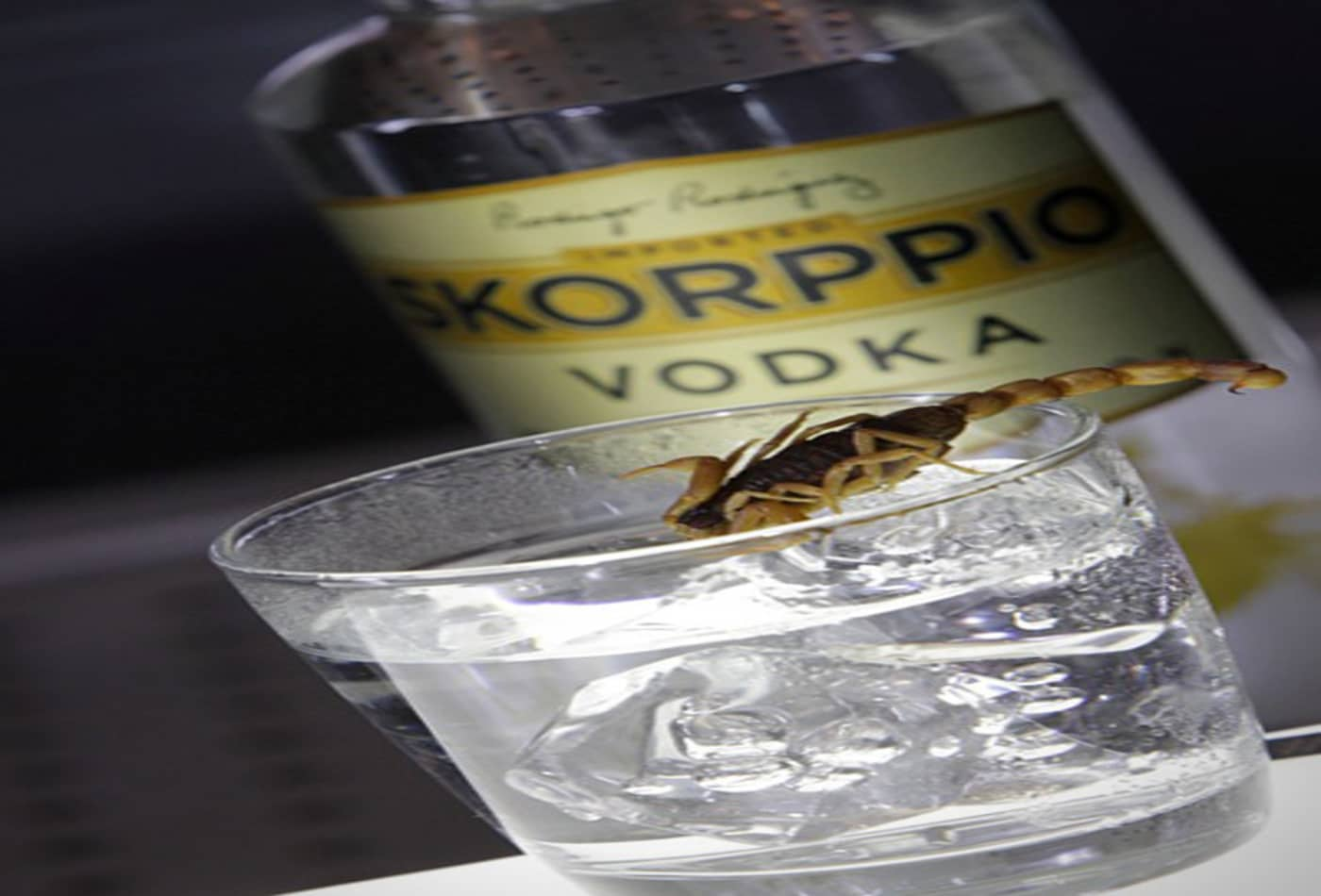 outrageous-drinks-skorppio-vodka.jpg